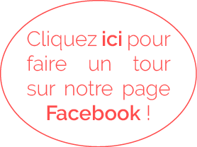 FB-ISD100x
